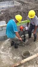 遂宁市新款小型手提植树挖坑机图片