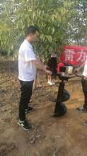 浙江省衢州市功能齐全电线杆挖孔机图片