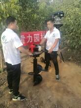 徐州市睢宁县实用又轻松植树钻洞机图片