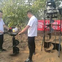 甘肃省酒泉市耐用性超强拖拉机钻洞机图片