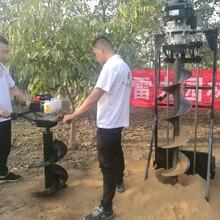 滁州市生产商小型拖拉机挖坑机图片