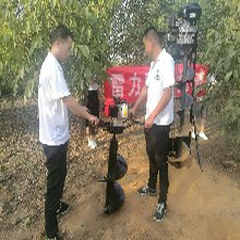 广安市厂家推荐栽树钻洞机图片