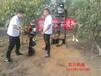 福州小型挖坑机厂家深度打坑机现货