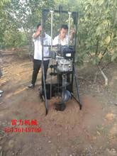 扬州市经济款小型打坑机图片