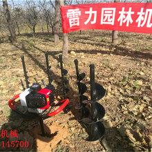 上海桩芯清理机大功率图片