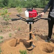汽油机栽树挖坑机动力足机身轻图片