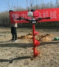 四川挖树窝机小型挖坑机优质打洞施肥机厂家直销图片