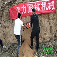 新乡新乡县横向打洞机绿化种植图片