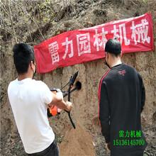 承德隆化县小型挖坑机全国可发图片
