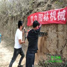 榆林府谷县护栏打桩机厂家热销图片