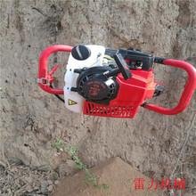 晋中昔阳县小型挖坑机全新上市图片