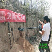杭州滨江火热爆款图片