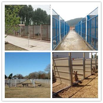 天津开发区售后无忧养狗场具体位置