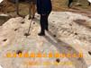丹東開采石灰巖不能放炮劈石機分裂機