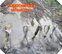 南平至龙岩线改造工程液压开山劈裂机厂家电话