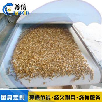 黄粉虫烘干机多少钱_面包虫微波烘干设备价格
