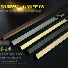 特攻金属制品不锈钢线条/不锈钢彩色线条边框嵌条/厂家直销定制不锈钢线条包边