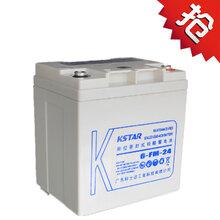 科士达UPS电源12V24AHLC-P124ST蓄电池