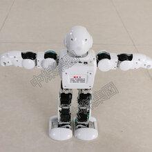 阿尔法跳舞机器人工厂直销,跳舞机器人玩具图片