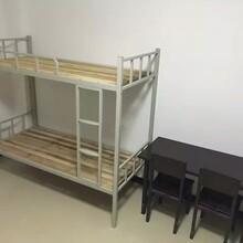 鐵床雙層床公寓床廠家