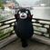 卡通人偶促销熊本熊