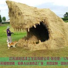 犍為江蘇稻草人工藝品銷售廠家圖片