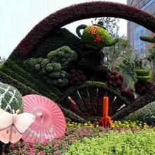 芮城城市景观绿雕销售价格图片