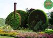 平昌立體綠雕植物批發