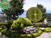 彰武仿真植物綠雕廠商出售