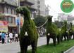 龙岩中秋节绿雕春节绿雕经销商
