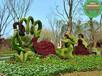 張掖動物綠雕喜洋洋稻草人綠雕制作公司