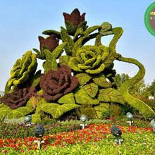 绥棱节日灯笼绿雕供应商图片