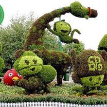 巍山庆典植物绿雕布置厂商出售图片