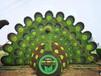 阜新立體綠化花壇生產價格詳情