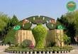 嵊州綠雕設計綠雕景觀供貨價格