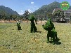 豐臺狗造型綠雕高清圖