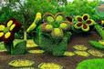 萬寧草皮植物綠雕什么價格?