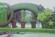石景山園林景觀綠雕批發商