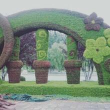 独山立体花坛绿雕制作制作批发图片