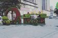 鄂城蝴蝶鋼琴綠雕生產價格