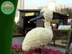 上杭动物绿雕厂商