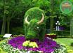 长泰城市绿雕主题哪里生产?