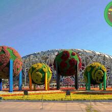 舟山节日灯笼绿雕批发商图片
