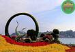 伊濱綠雕植物墻生產廠家