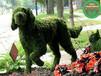 句容仿真綠雕制作制作工藝流程
