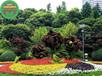 通城綠色景觀雕塑每日報價