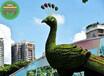 南湖仿真綠雕樂器立體綠雕植物制作廠家