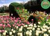 荔湾节日绿雕立体花坛价格怎么样