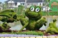 儋州立體花壇綠雕制作團隊