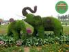 嘉興立體花壇綠雕制作價格?綠雕廠家